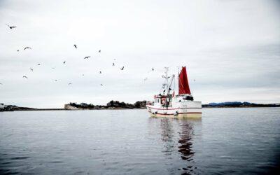 En fiskekutter sejler i et stille hav foran til et idyllisk klippelandskab