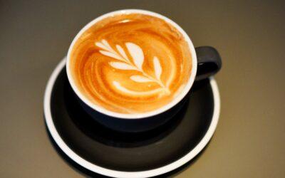 cappuccino for gourmeten