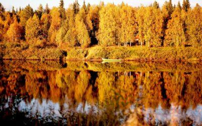 Smukke skovsøer og smukke efterårsfarver