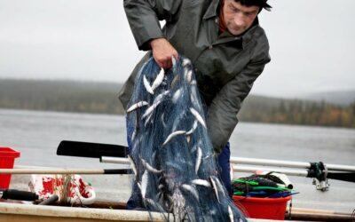 Lystfiskere lever længere