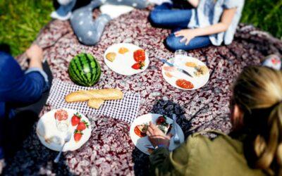Picknick er sommerens store hit blandt børnefamilier og par