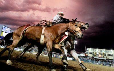 Rodeo og vilde heste er nogle af ingredienserne til en god aften