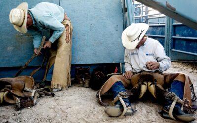 Bull Riders at Reno Rodeo
